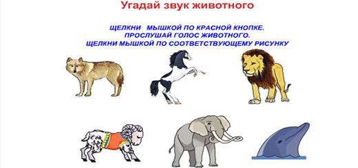 животные-звуки
