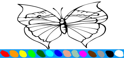 раскраска-бабочка7
