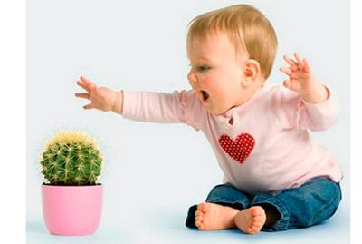 безопасность детей дома цветы