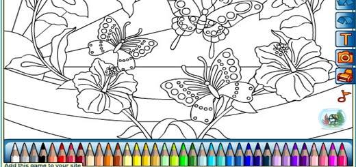 раскраска-бабочка8