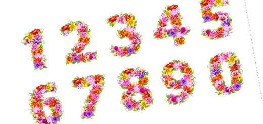 раскраски Цифры и цветы на английском