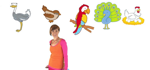 Веселая Школа — Птицы